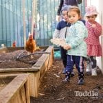 Jenny's ELC Maiden Gully kids with the chooks